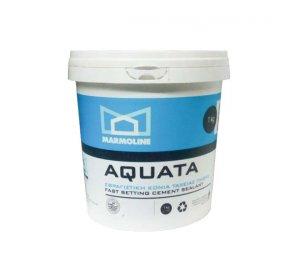 AQUATA 1kg-Σφραγιστικό επισκευαστικό κονίαμα ταχείας πήξης